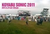 コヤブソニック2011ライブレポート